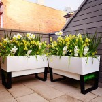Glowpear Unique Planter Give You The Opportunity To Make the Garden 'Yours'