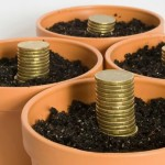 Things You Should Consider if Thinking About Starting Your Own Self Managed Superannuation Fund