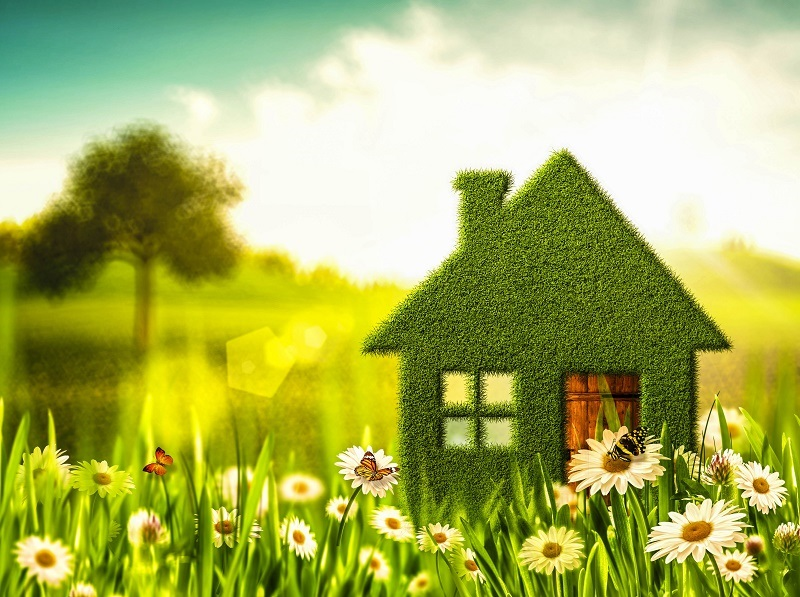 eco-friendly-home-products
