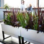 Modern pot for plant