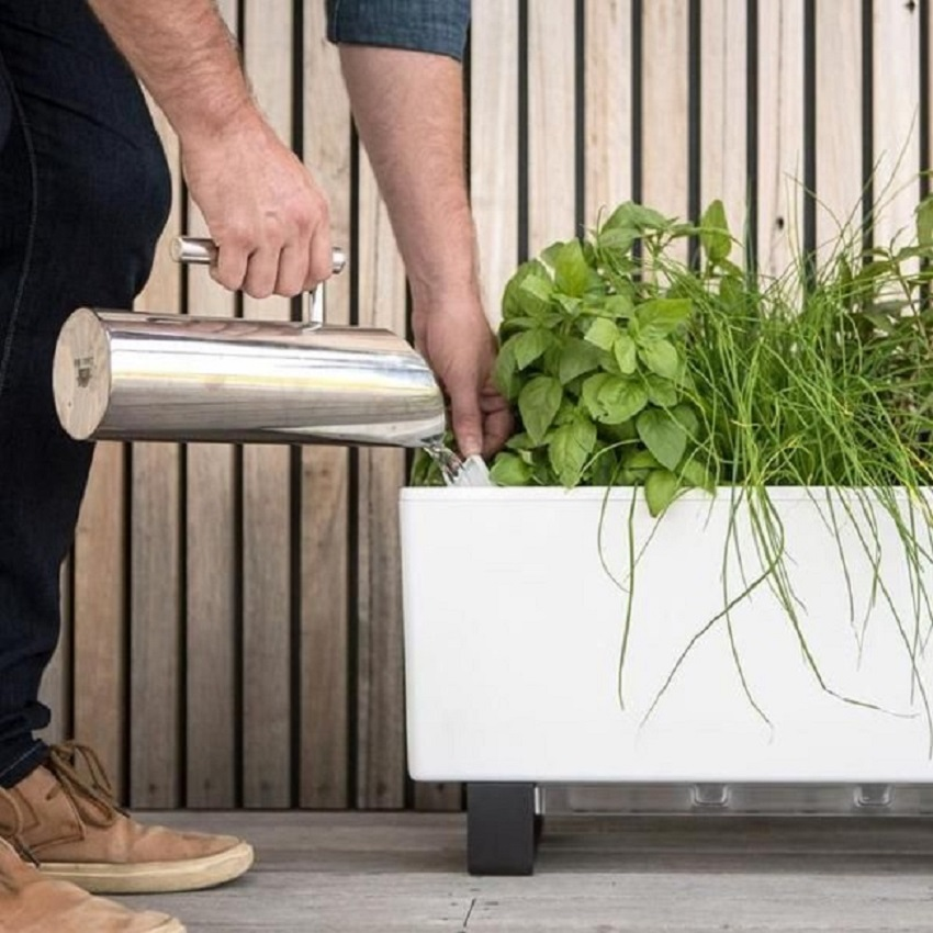 fill with water planters