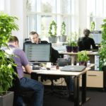 Office Gardens: Make the Most of Work and Gardening