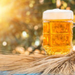 Hop, Drink, Repeat – A Beer Lover's Guide to Brewing Ingredients