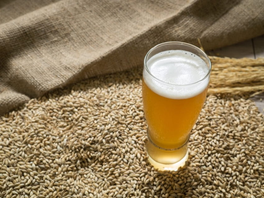 yeast based beer